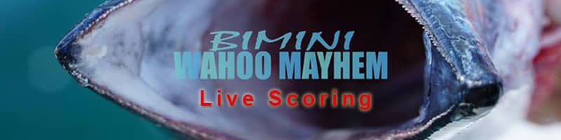 Bimini Wahoo Live Scoring | Live Scoring! | Meat Mayhem